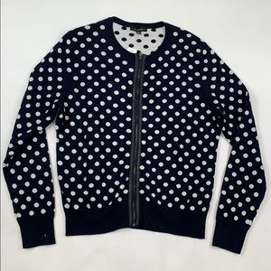 Ann Taylor Polka Dot Sweater